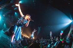あゆみくりかまき「ボクらの熊魂2019~お前もまたぎにしてやろうか!!TOUR~」東京・マイナビBLITZ赤坂公演の様子。(写真提供:SMEレコーズ)