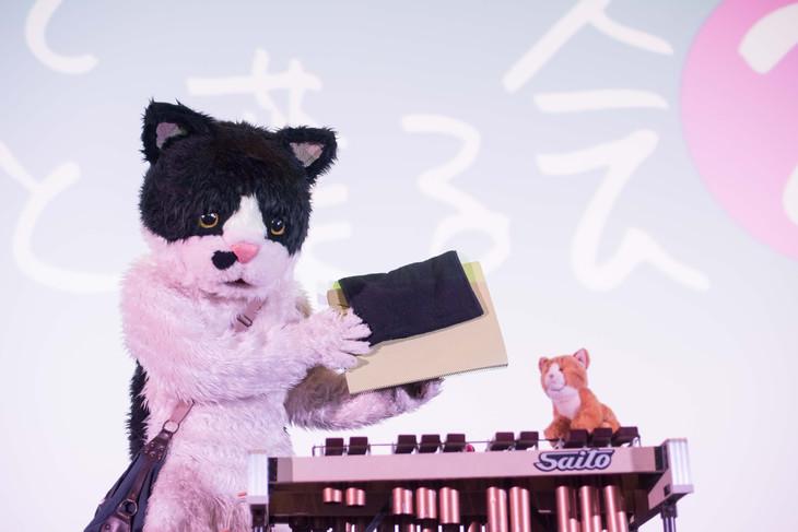 「むぎ(猫)メジャーデビュー直前!猫の日ミニライブ~歌ってちょっとしゃべる会2~」の様子。(撮影:小野正博)