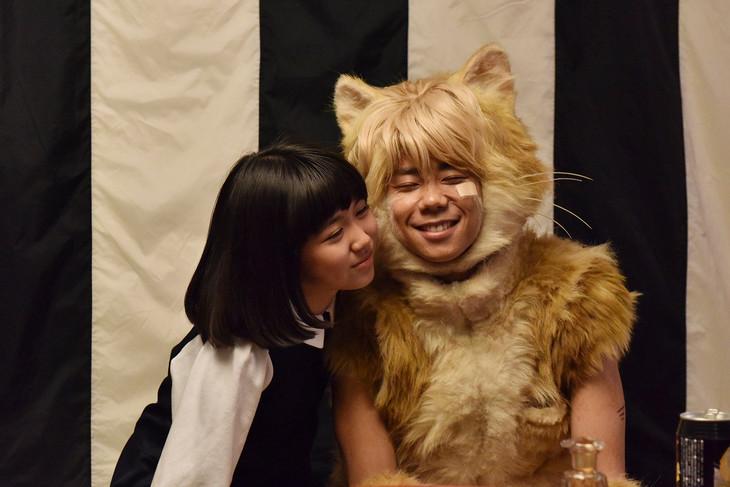 映画「トラさん~僕が猫になったワケ~」のワンシーン。 (c)板羽皆/集英社・2019「トラさん」製作委員会