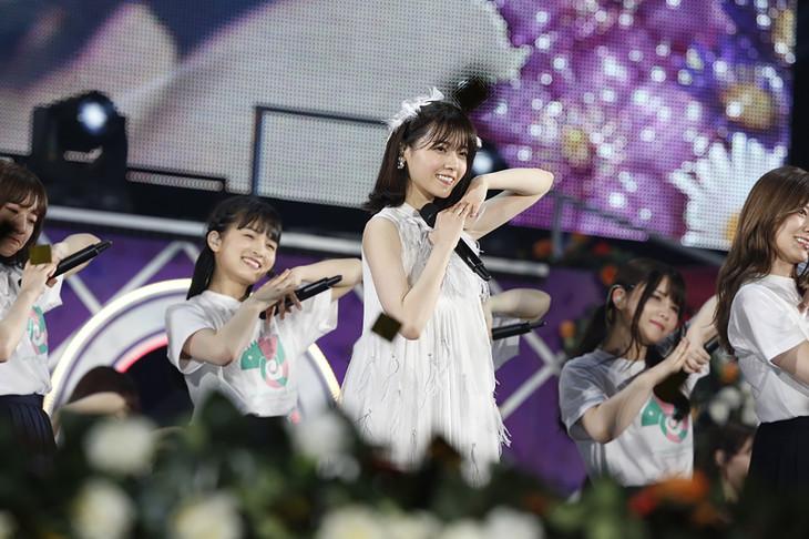 乃木坂46「7th YEAR BIRTHDAY LIVE -Day4-~西野七瀬 卒業コンサート~」の様子。(写真提供:ソニー・ミュージックレーベルズ)