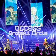 access「Grateful Circle」配信ジャケット