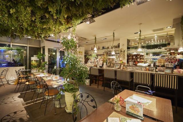 水槽と植物を一面に配置し癒しの空間を演出する店内。
