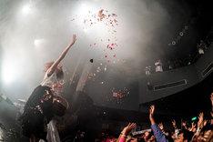 "SILENT SIREN「『31313』リリース記念シークレットライブ""無音の警告GIG""」の様子。(撮影:上飯坂一)"