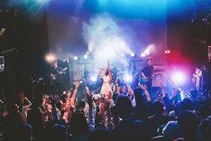 「カミツキ 'Secret Whisper' TOUR FINAL『噛みついて神ついて』ONE MAN」の様子。(Photo by Shin Ishihara)