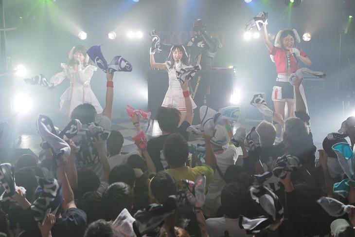 「DESURABBITS ワンマンLIVE兎革命 vol.1-卒業少女-」の様子。(photo by Daiki Tajima)