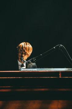杉本雄治(Vo, Piano)(Photo by Yuto Fukada)