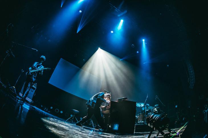 WEAVER「WEAVER 14th TOUR 2019『I'm Calling You~流星前夜~』」マイナビBLITZ赤坂公演の様子。(Photo by Yuto Fukada)