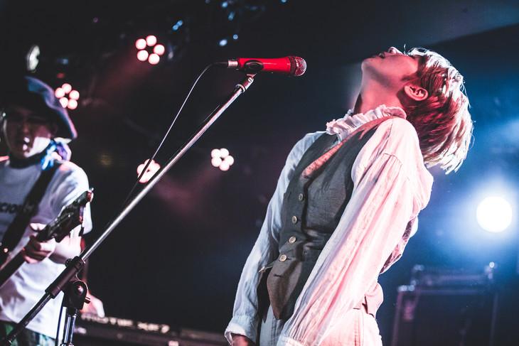 TWEEDEES「ショウほど素敵な商売はない~『DELICIOUS.』TOUR2019 」追加公演の様子。(撮影:スエヨシリョウタ)
