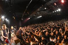 Ken Yokoyama「New Age Tour」東京・LIQUIDROOMの様子。(Photo by Teppei Kishida)