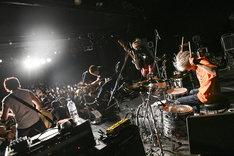 BURL(Photo by Teppei Kishida)