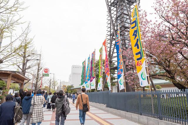 4月16日に実施された「Q」東京・両国国技館公演の様子。