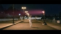 THE CHARM PARK「花が咲く道」ミュージックビデオより。