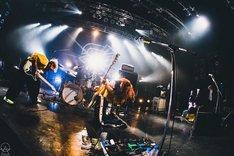 「大反射祭Tour」ファイナル東京・TSUTAYA O-EAST公演の様子。(写真提供:エイベックス・エンタテインメント株式会社)