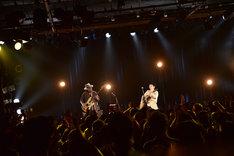 T字路s「PIT VIPER BLUES Release Tour」の様子。