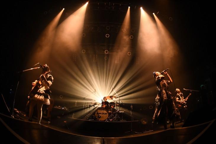 BAND-MAID(撮影:MASANORI FUJIKAWA)