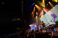 「魔法少女になり隊 ONE MAN TOUR 2019 ~Aを取り戻せ!~」東京・マイナビBLITZ赤坂公演の様子。(Photo by Yusuke Sato)