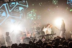 「お口ぽかーん!LAST TOUR ~寝ても覚めてもねごとじゃナイト~」東京・LIQUIDROOM公演の様子。(Photo by AZUSA TAKADA)