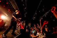 「SLAM TOUR 2019」東京・LIQUIDROOM公演の様子。(Photo by masalivephoto)