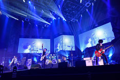 [ALEXANDROS]「Sleepless in Japan Tour」埼玉・さいたまスーパーアリーナ公演の様子。(撮影:河本悠貴)