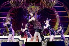「AYAKA NATION 2019 in Yokohama Arena」の様子。(撮影:上飯坂一、小境勝巳)