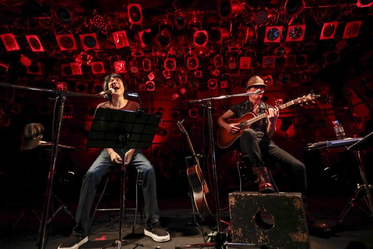 ブギ連「ブギる心」東京・渋谷CLUB QUATTRO公演の様子。(撮影:柴田恵理)