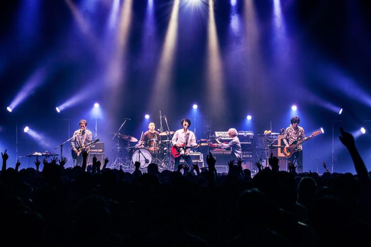 GRAPEVINE「GRAPEVINE tour2019」最終公演の様子。(撮影:岡田貴之)