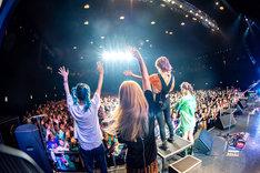 "SCANDAL「SCANDAL TOUR 2019 ""Fuzzy Summer Mood""」Zepp Tokyo公演の様子。(撮影:ヤオタケシ)"