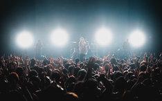 ミオヤマザキのライブの様子。(撮影:ヤマダマサヒロ)