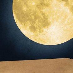 ナオトインティライミ「まんげつの夜」初回限定盤、通常盤共通ジャケット