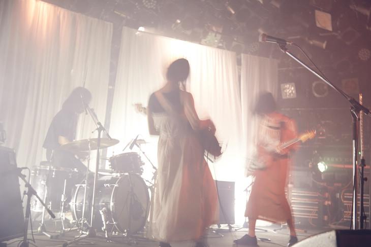 「まばたき」最終公演の様子。(撮影:川島悠輝)