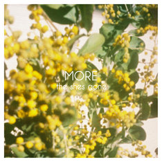 the shes gone「MORE」ジャケット