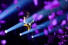 「兵、走る」でギターソロを披露する松本孝弘(G)。(写真提供:VERMILLION RECORDS)