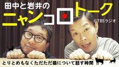 「田中と岩井のニャンコロトーク」ビジュアル