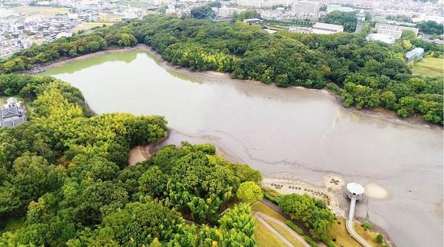 水抜き後の山田池。(c)テレビ東京