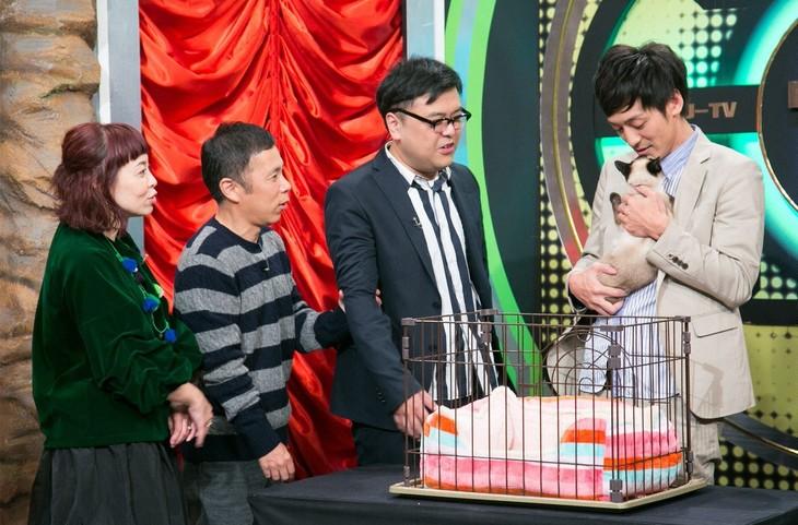 """「なるみ・岡村の過ぎるTV」にて、スタジオに""""高級すぎるペット""""を迎える(左から)なるみ、ナインティナイン岡村、とろサーモン。(c)ABC"""