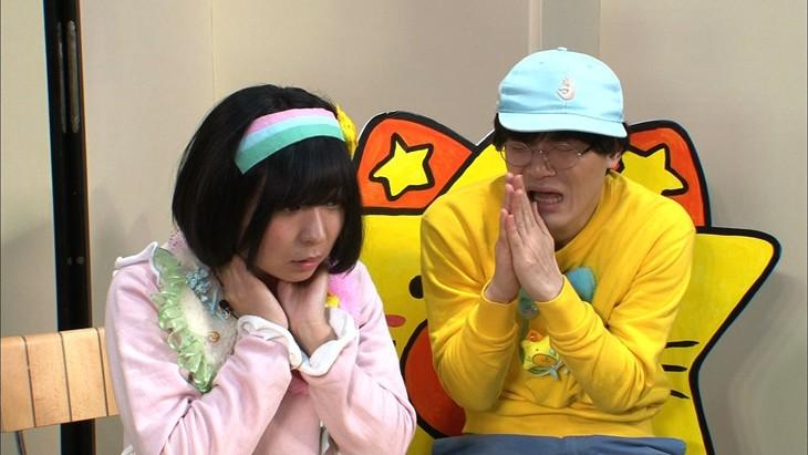 たけしクイズに挑むにゃんこスター・アンゴラ村長(左)。(c)日本テレビ