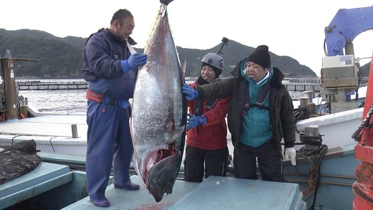 「超体感!エクストリーム・ミッション」で、極上マグロを育てる漁業者に密着する、わらふぢなるお。(c)NHK