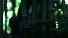 永野のコント「イカになった先生」が原案のショートフィルム「LOHAS」より。