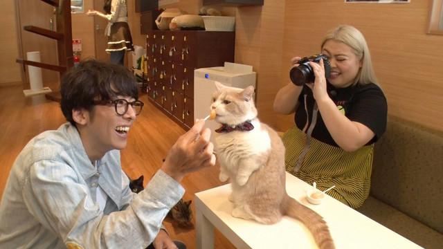 高橋一生(左)と猫のベストショットを狙う渡辺直美(右)。(c)フジテレビ