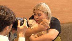猫と触れ合う渡辺直美。(c)フジテレビ