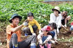 「中学聖日記」第6話では有村架純演じる末永聖は小学校に勤務している。(c)TBS