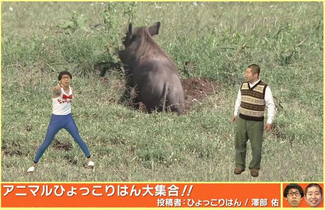 「急上昇↑ZOOチューバー」より。(c)NHK