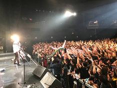 「弟ー!」という観客の声に応えダイブに挑戦するミキ亜生。(撮影:神藤剛)