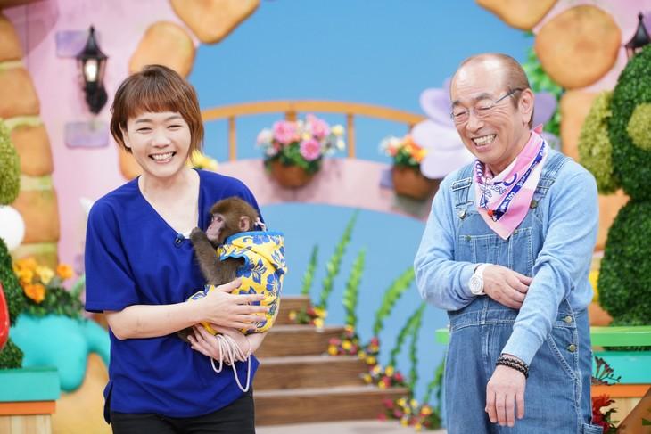 「天才!志村どうぶつ園」のワンシーン。(c)日本テレビ