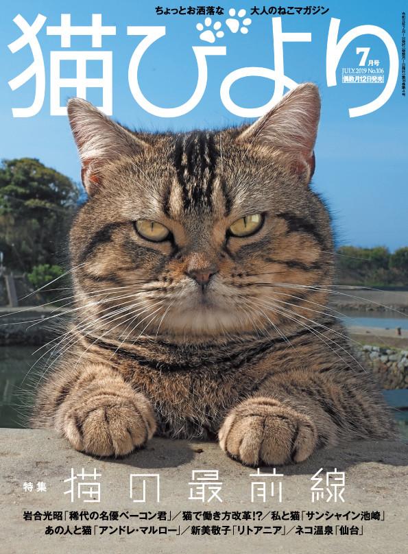 「猫びより」2019年7月号の表紙。