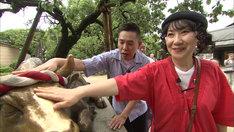 太宰府天満宮を訪れる(左から)爆笑問題・太田、室井滋。(c)テレビ朝日