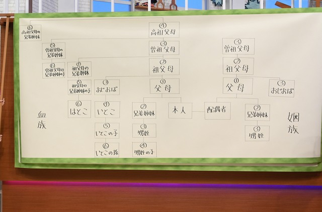 スタッフが制作した巨大家系図。(c)日本テレビ