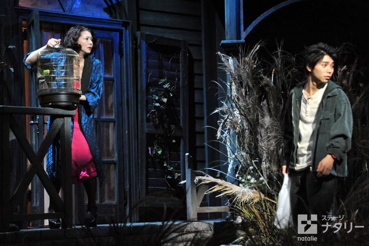シアターコクーン・オンレパートリー2016「シブヤから遠く離れて」プレスコールより。左から小泉今日子演じるマリー、村上虹郎演じるナオヤ。