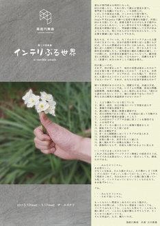 箱庭円舞曲「インテリぶる世界」チラシ表