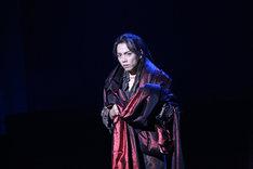 2014年上演のミュージカル「モーツァルト!」より。(写真提供:東宝演劇部)